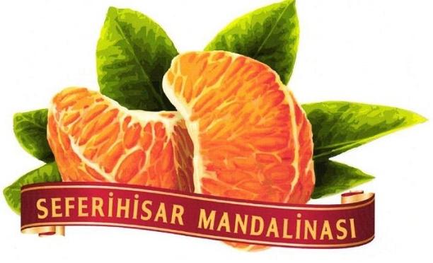 Seferihisar Mandalinası tescili aldı, Gaziantep iç fıstık için başvurdu
