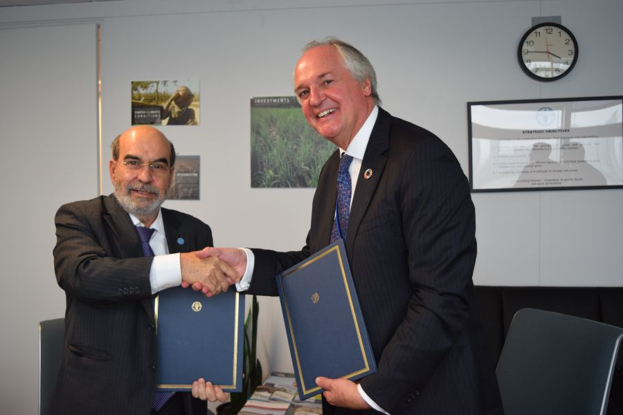 FAO ve Unilever'den gıda israfını azaltmaya yönelik işbirliği!