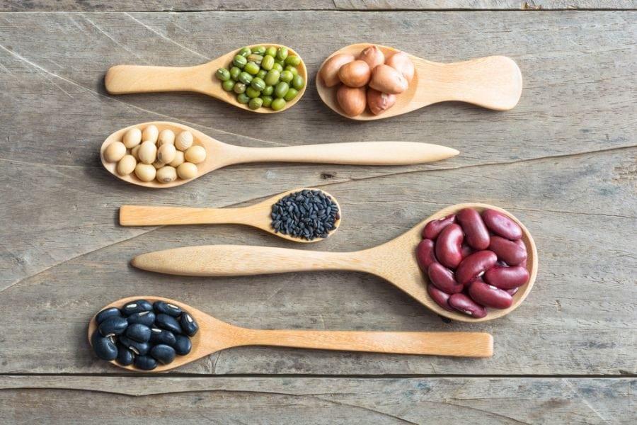 En kaliteli vegan protein kaynakları nelerdir?