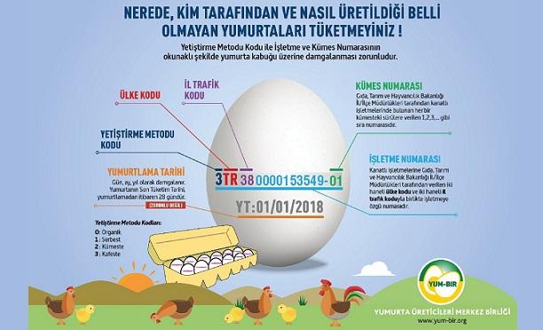 Kodlu yumurta uygulaması hayata geçiyor!