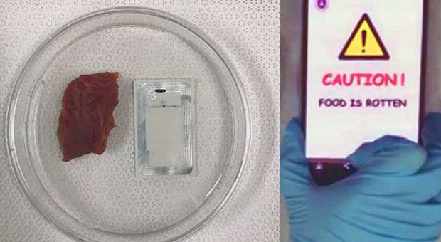 Gıda güvenliğinde yeni teknoloji