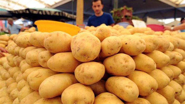 """Yerli patates """"Nahita"""" yurt dışına açılıyor"""