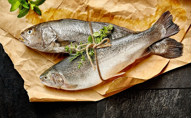 Türklerin balık kültürü çok eskilere dayanıyor!
