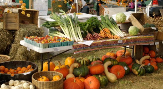 Doğal ürünler pazarı kurulacak