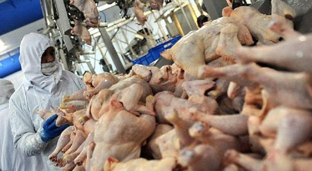 Dev gıda üreticisinden skandal!