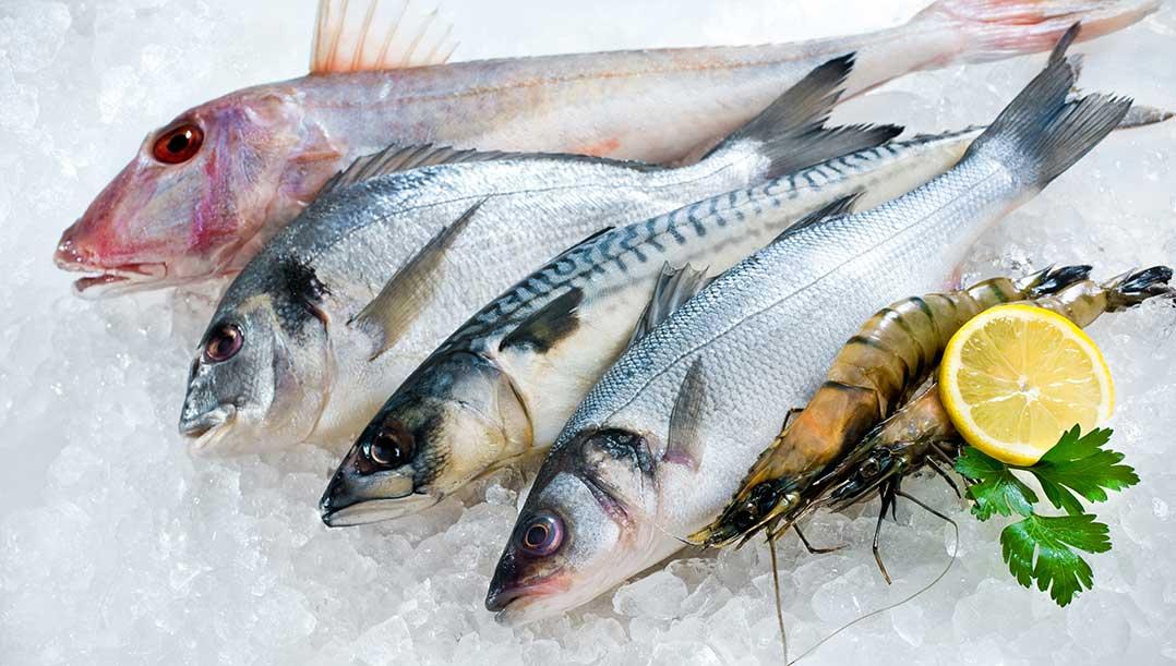 Balık yemek Parkinson hastalığının \'önlenmesine yardımcı oluyor